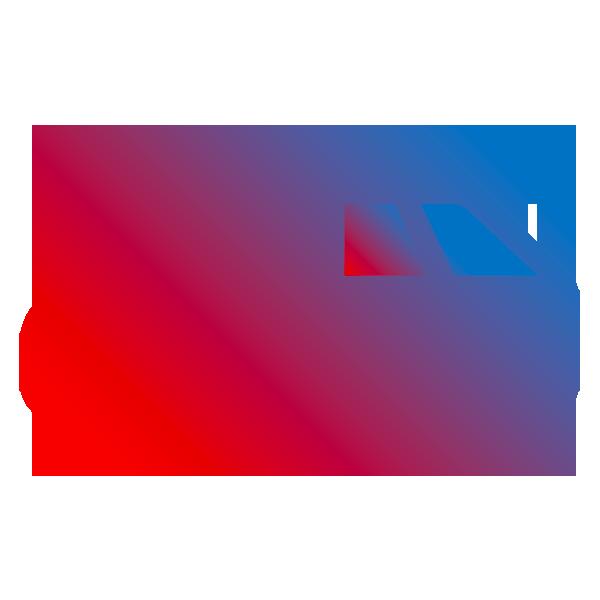 Pellicole-oscuranti-vetri-auto-Mogliano-Veneto